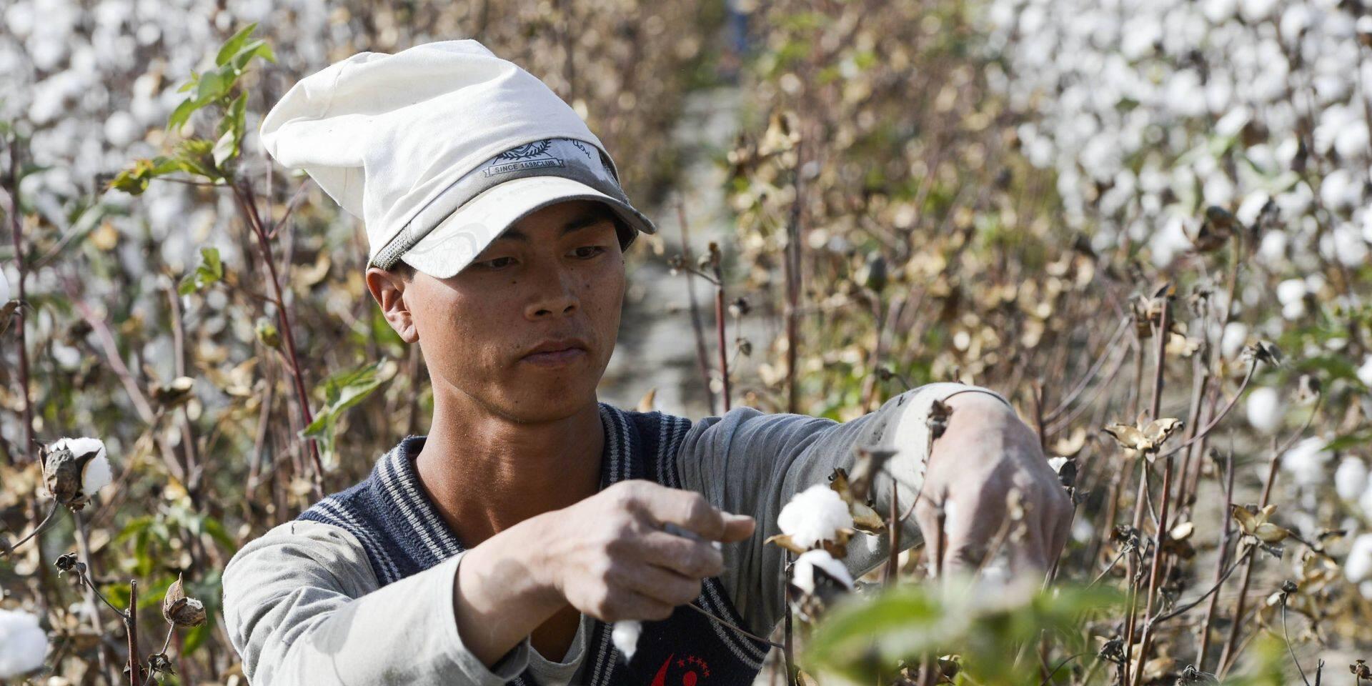 """Pékin rejette toute accusation de """"travail forcé"""" au Xinjiang"""