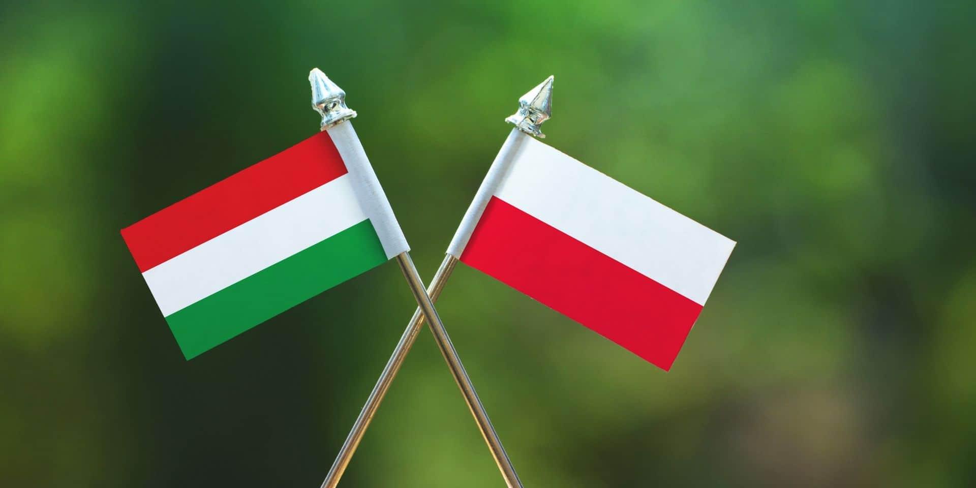 La Pologne et la Hongrie ont attaqué le nouveau règlement liant les fonds européens au respect de l'état de droit.