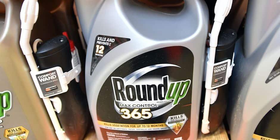 Procès Monsanto: Le jour de rendre des comptes est venu