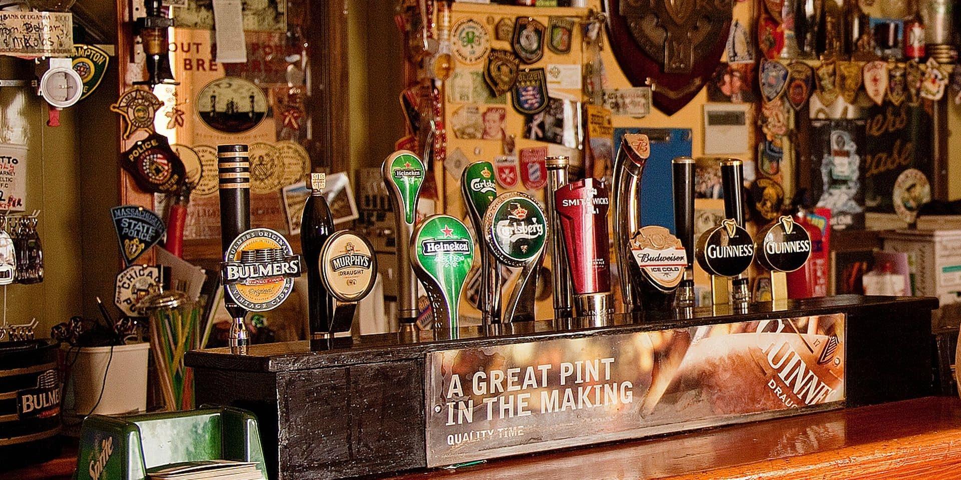 Woman Raising A Glass Inside Pub; Killarney, County Kerry, Ireland Reporters / Design Pics