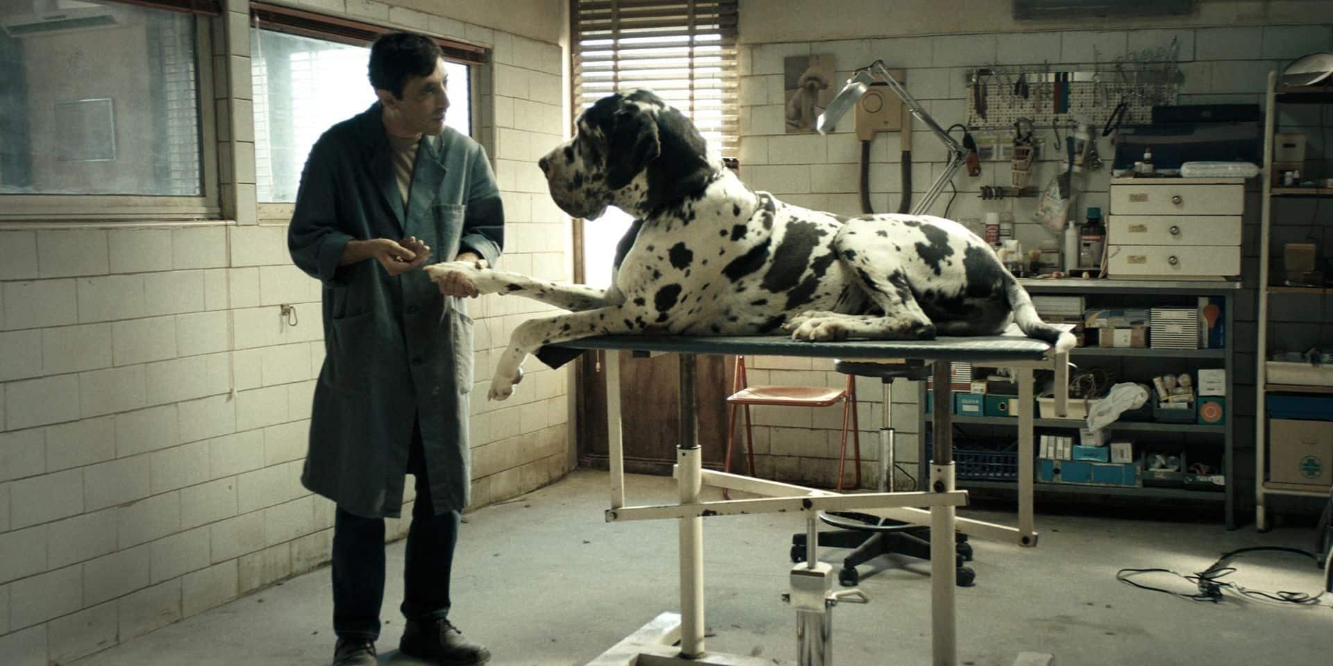 A Cannes, on a vu le nouveau Garrone, quel film nom d'un chien!