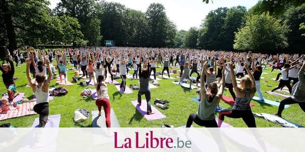 Illustration picture shows a yoga practise session on the Brussels Yoga Day, in Bois de la Cambre/ Ter Kamerenbos, in Brussels, ahead of International Yoga Day, Sunday 19 June 2016. The second International Yoga Day will be held on 21 June 2016. BELGA PHOTO NICOLAS MAETERLINCK