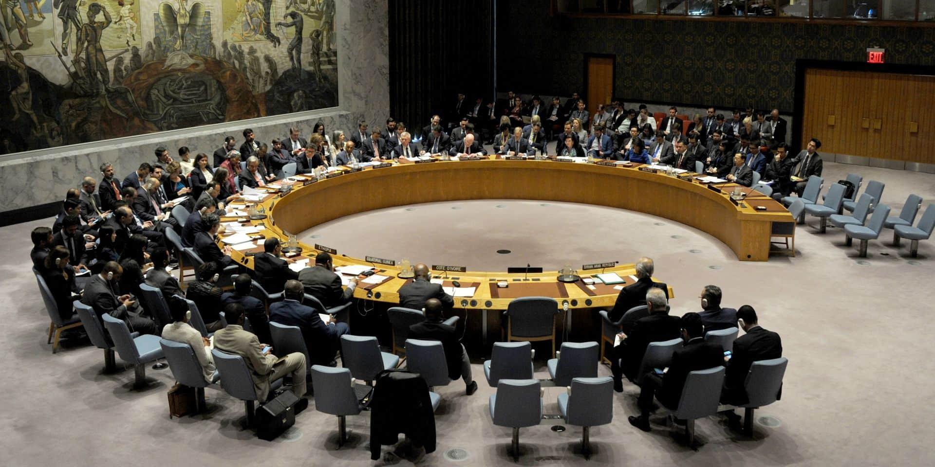 Conflit en Syrie: Moscou bloque à l'ONU un texte américain demandant l'arrêt de l'offensive turque