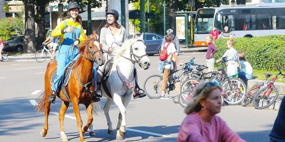 Lettre ouverte à Elke Van Den Brandt: Pour des dimanches sans voiture cet été à Bruxelles