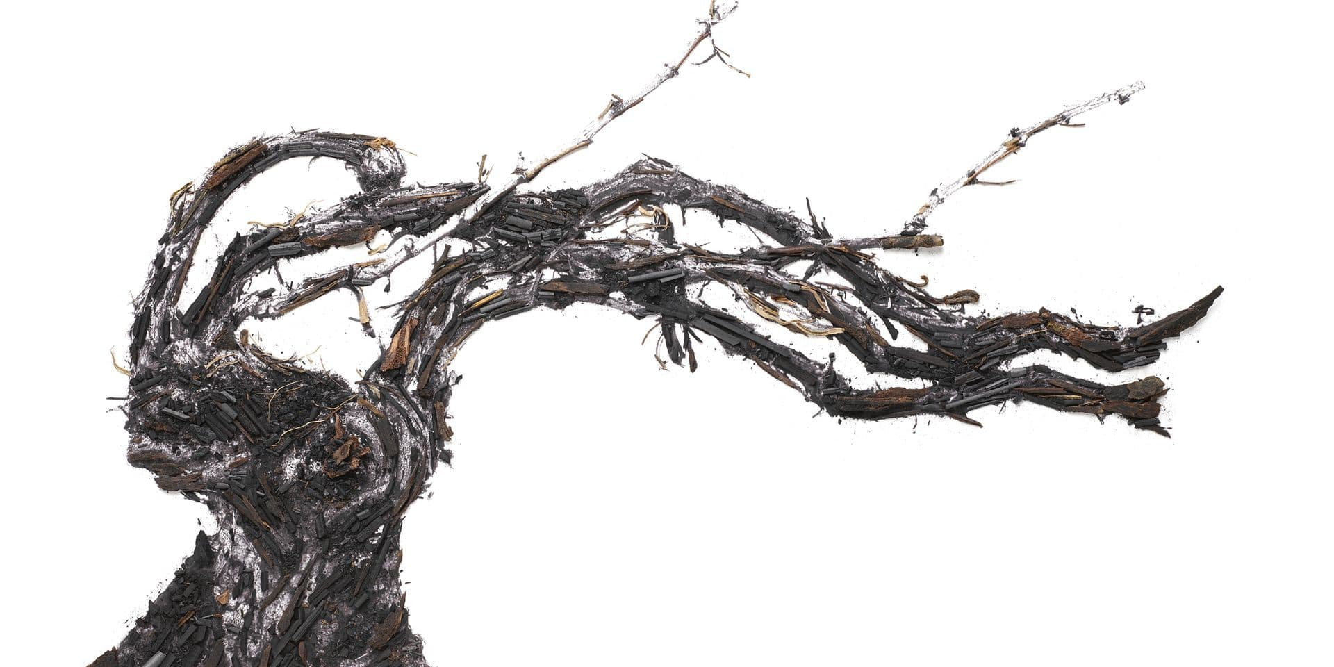 Vik Muniz, le ceps de vigne et le fusain : la magnifique collab' arty de Ruinart