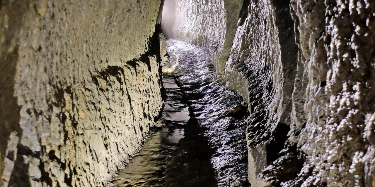 Liège : l'areine de la Chartreuse bientôt classée