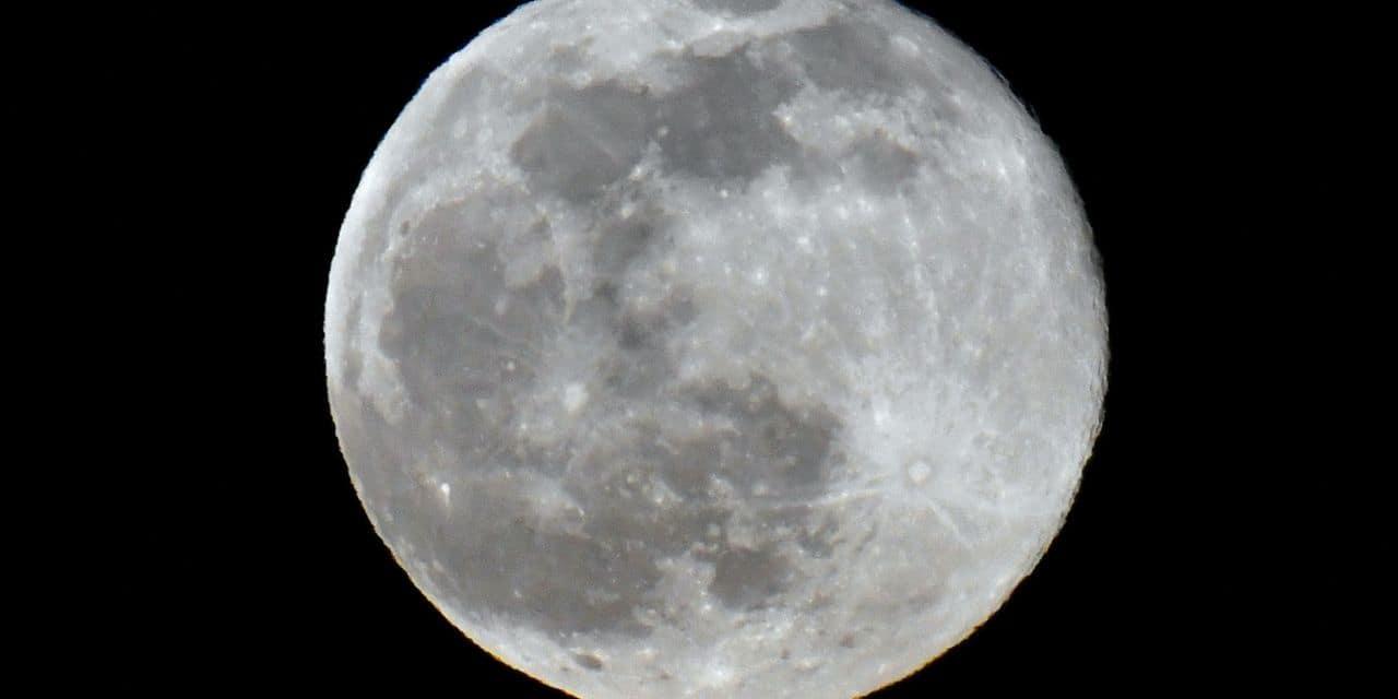 Des scientifiques veulent envoyer 6,7 millions d'échantillons de sperme sur la Lune - lalibre.be