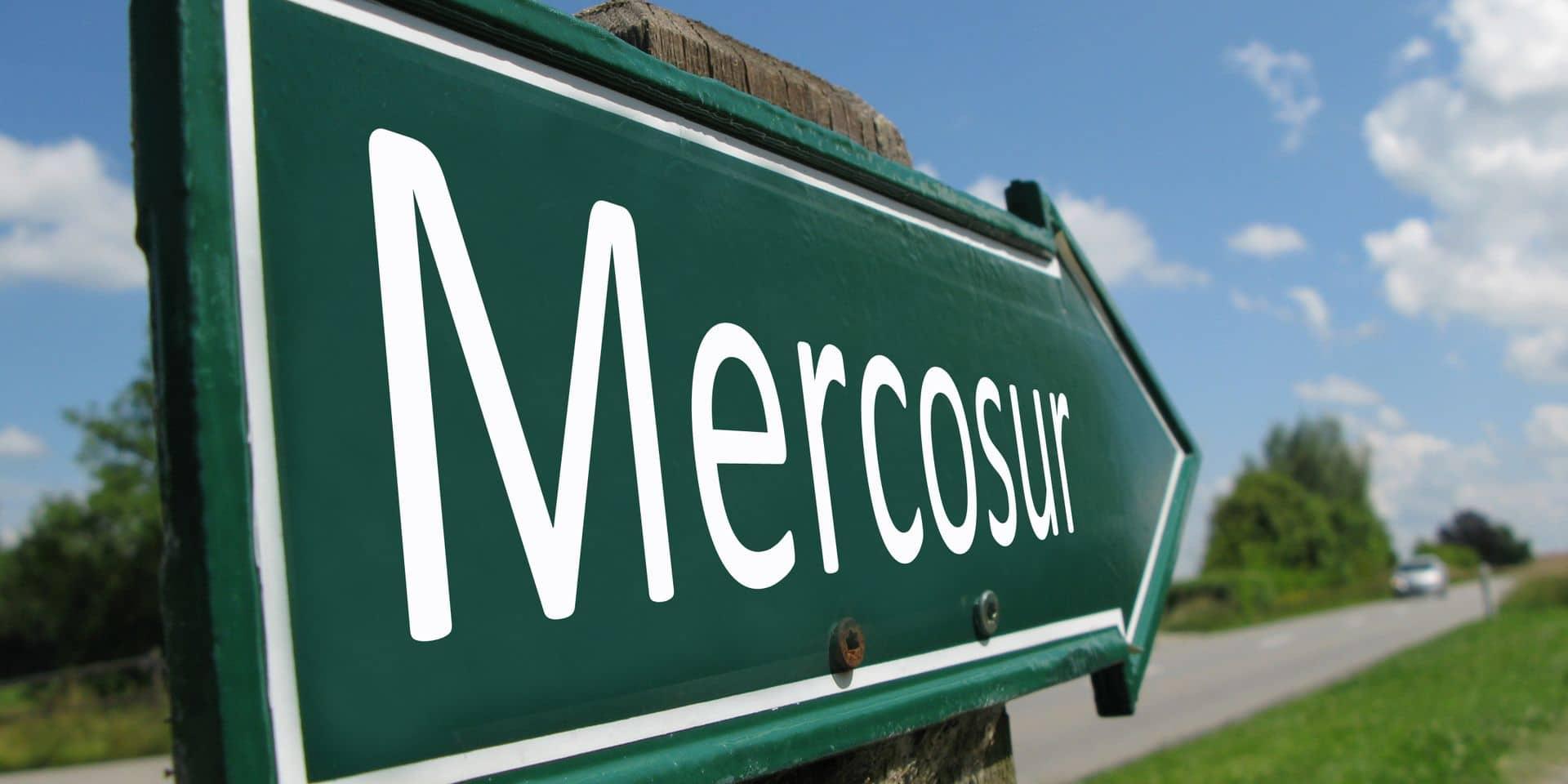 Accord de libre-échange avec le Mercosur : pourquoi suscite-t-il autant d'opposition ?