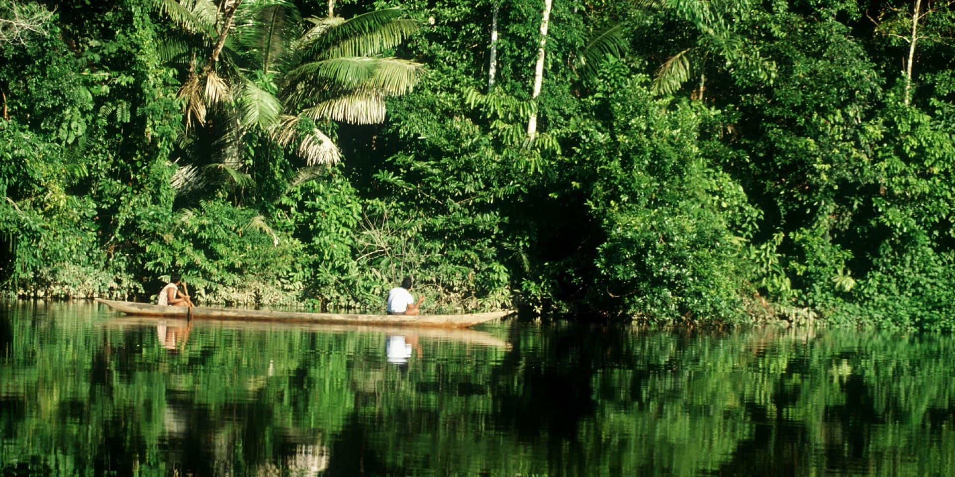 L'Amazonie, notre poumon encrassé