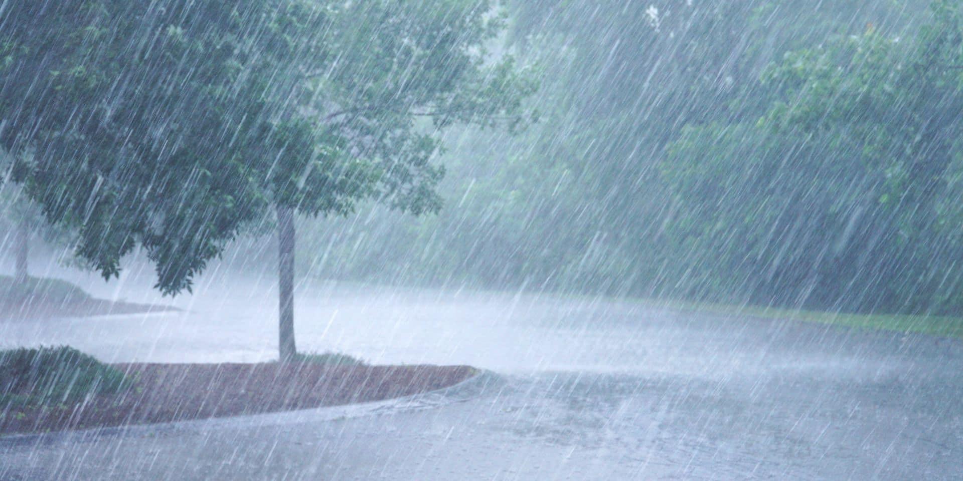Météo : après le beau temps, pluie et orages viendront jouer les trouble-fête