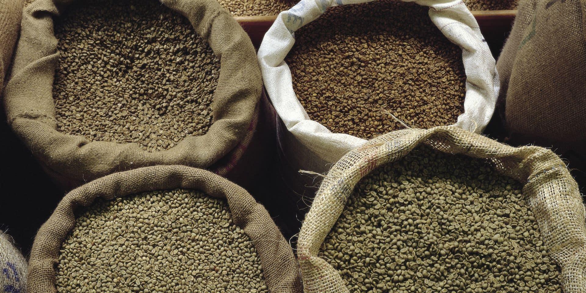 Le fabuleux destin d'un importateur de café
