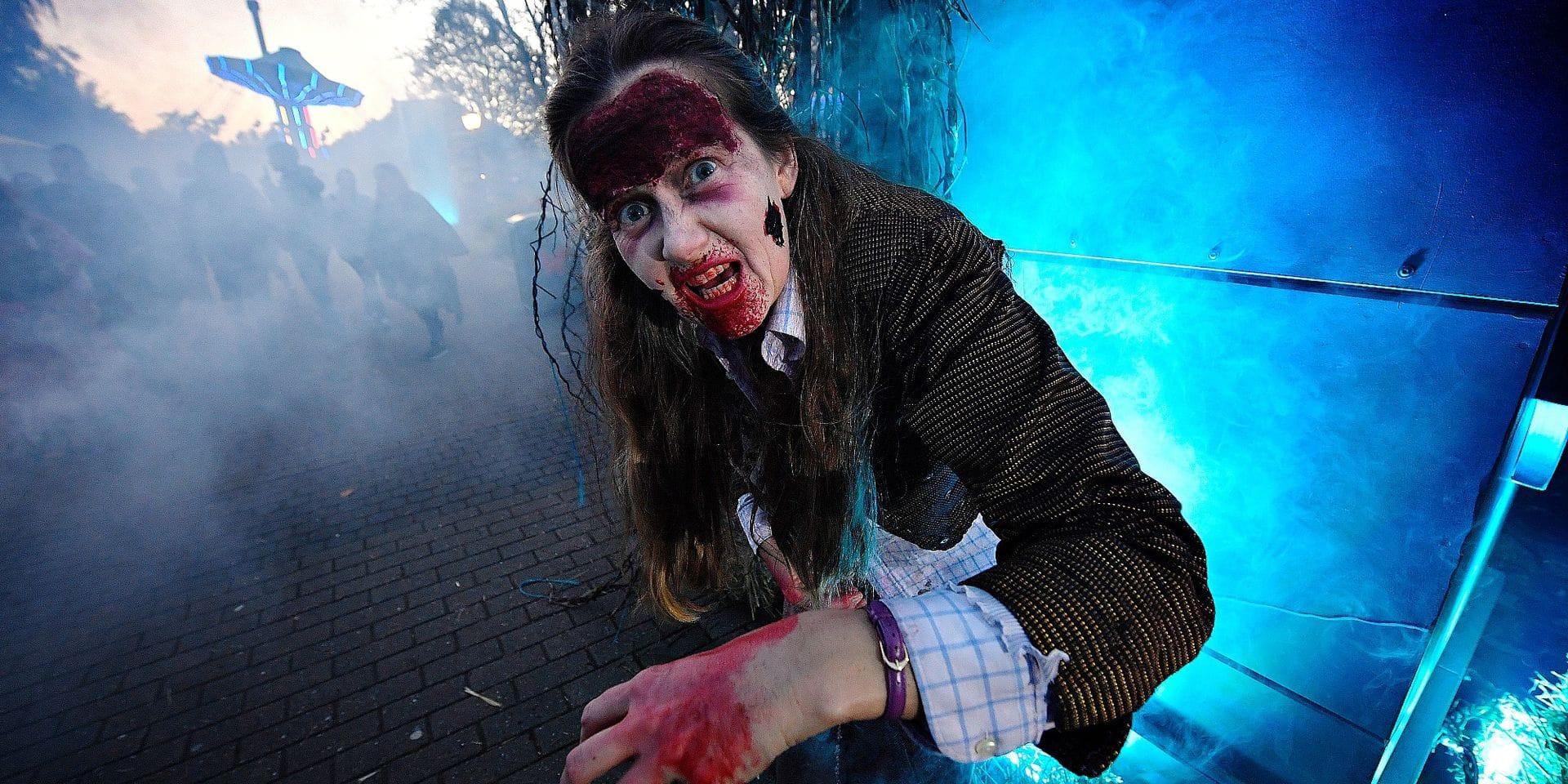 Walibi, Pairi Daiza, Mini-Europe & co: Halloween ne se démode pas dans les parcs
