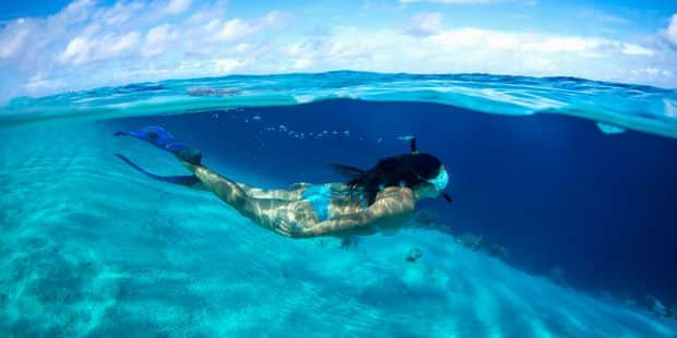 Hawaii interdit les crèmes solaires accusées de détruire les coraux - La Libre