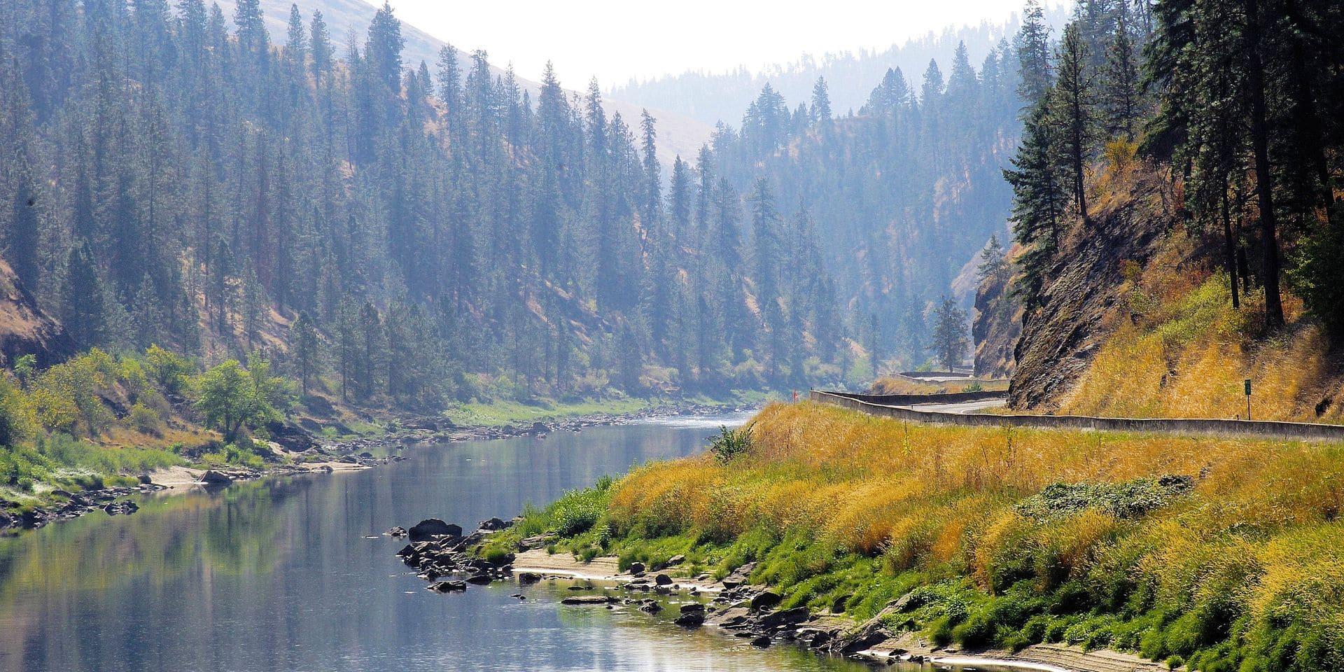 """""""Idaho"""", premier remarquable roman de la jeune Américaine Emily Ruskovich"""