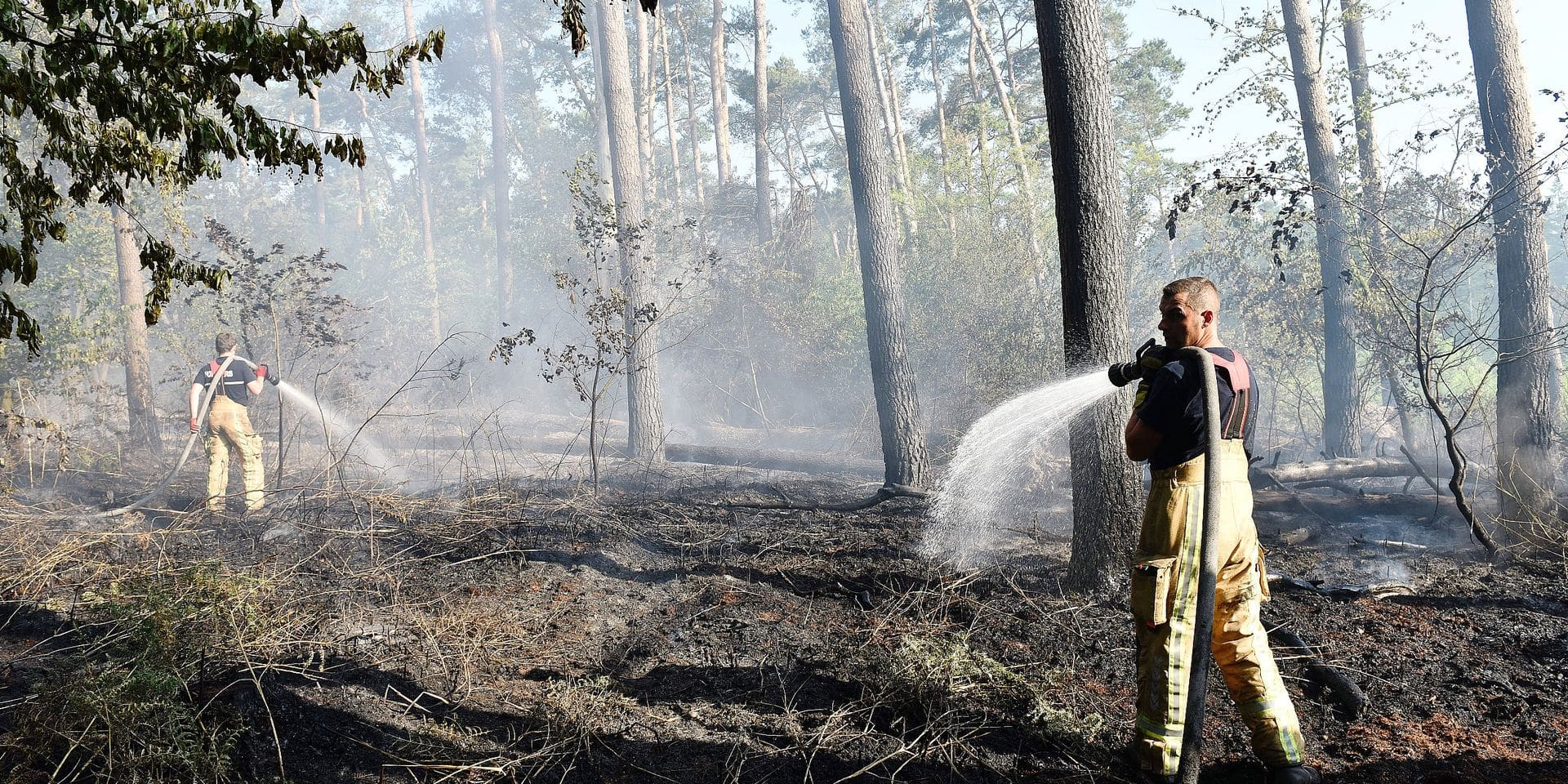 Firelen pictured as a fire started earlier today in the Villers wood in Genappe, Baisy-Thy, Walloon Brabant, Monday 19 June 2017, while Belgium face a dry weather and high temperatures recently. BELGA PHOTO JEAN-LUC FLEMAL