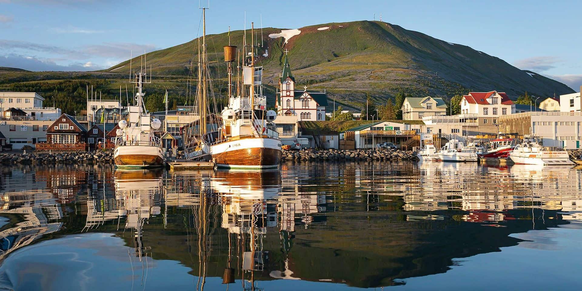 Husavik, le petit village islandais qui rêve d'un Oscar