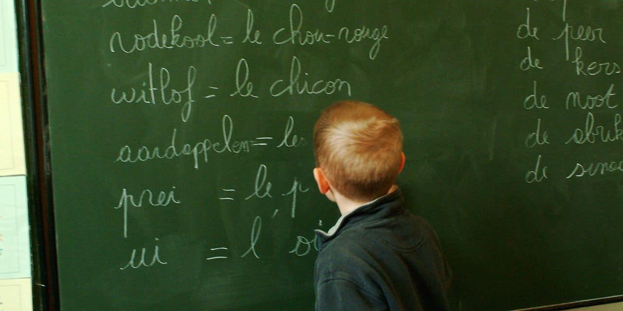 Quelle est cette langue parlée par des milliers de flamands, qui supplante le néerlandais standard?