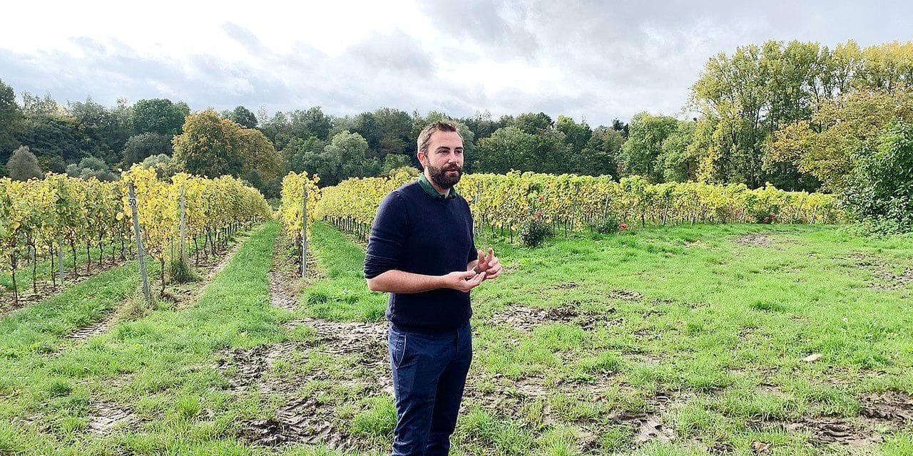 Nivelles: la ferme du Chapitre est devenue un domaine viticole