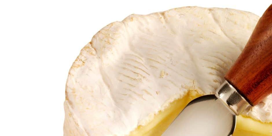 Camembert : de prestigieux chefs à la rescousse du fromage menacé