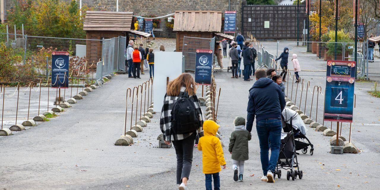 Pairi Daiza, complètement préservé par les mesures : le parc animalier ouvert à 90%