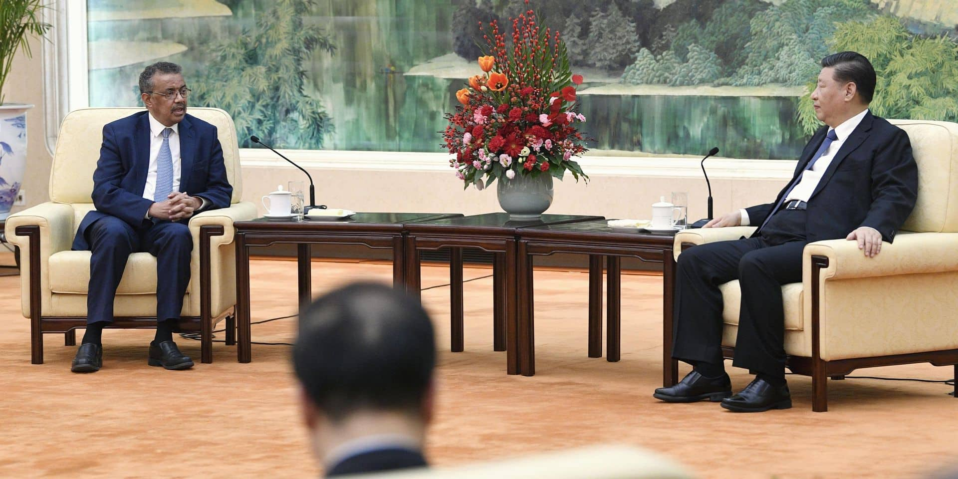 WHO director general meets Chinese President