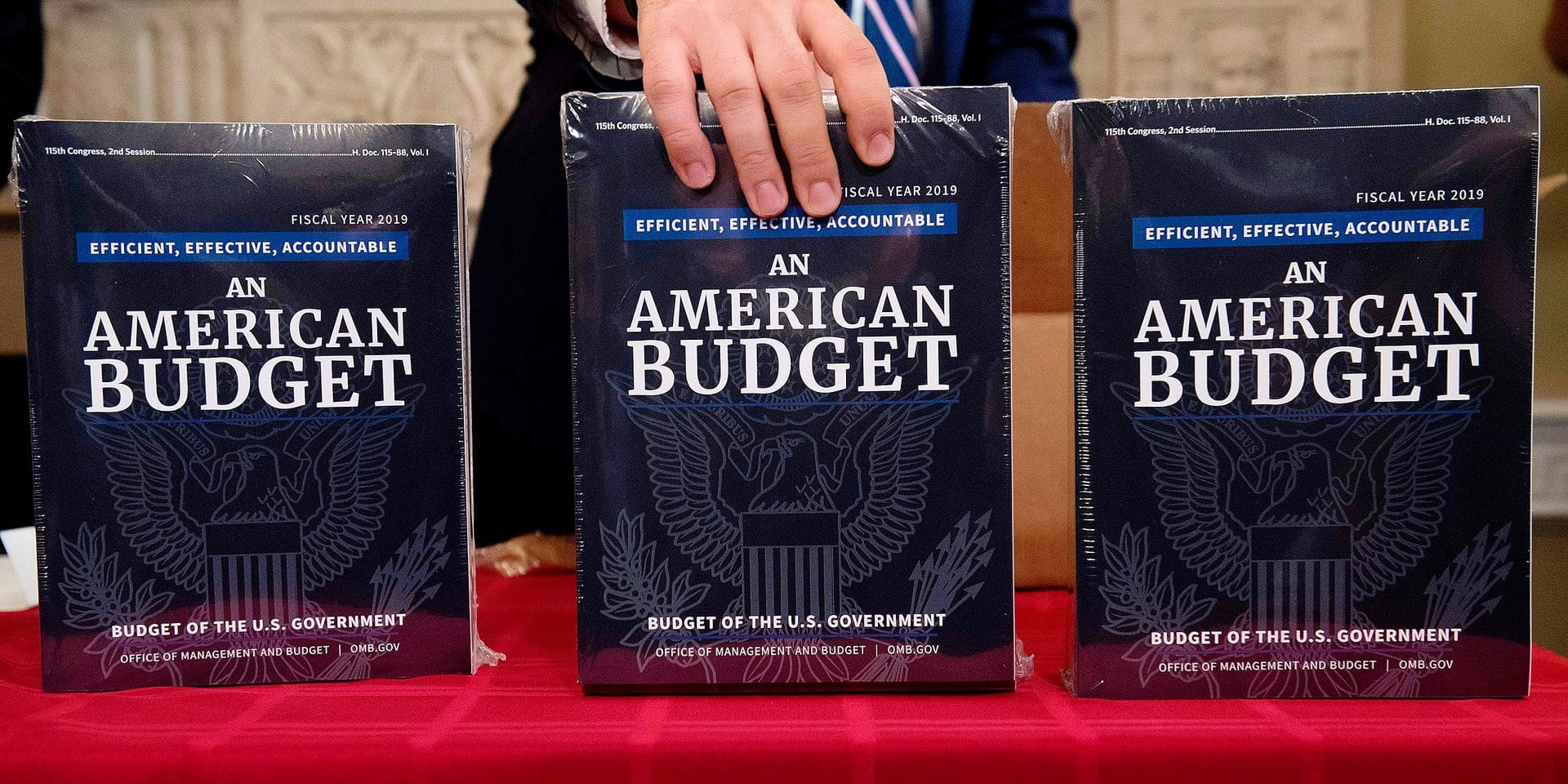 A Congressional staff member delivers copies of US President Donald Trump's Fiscal Year 2019 Government Budget at the House Budget Committee on Capitol Hill in Washington, DC, February 12, 2018. / AFP PHOTO / SAUL LOEB