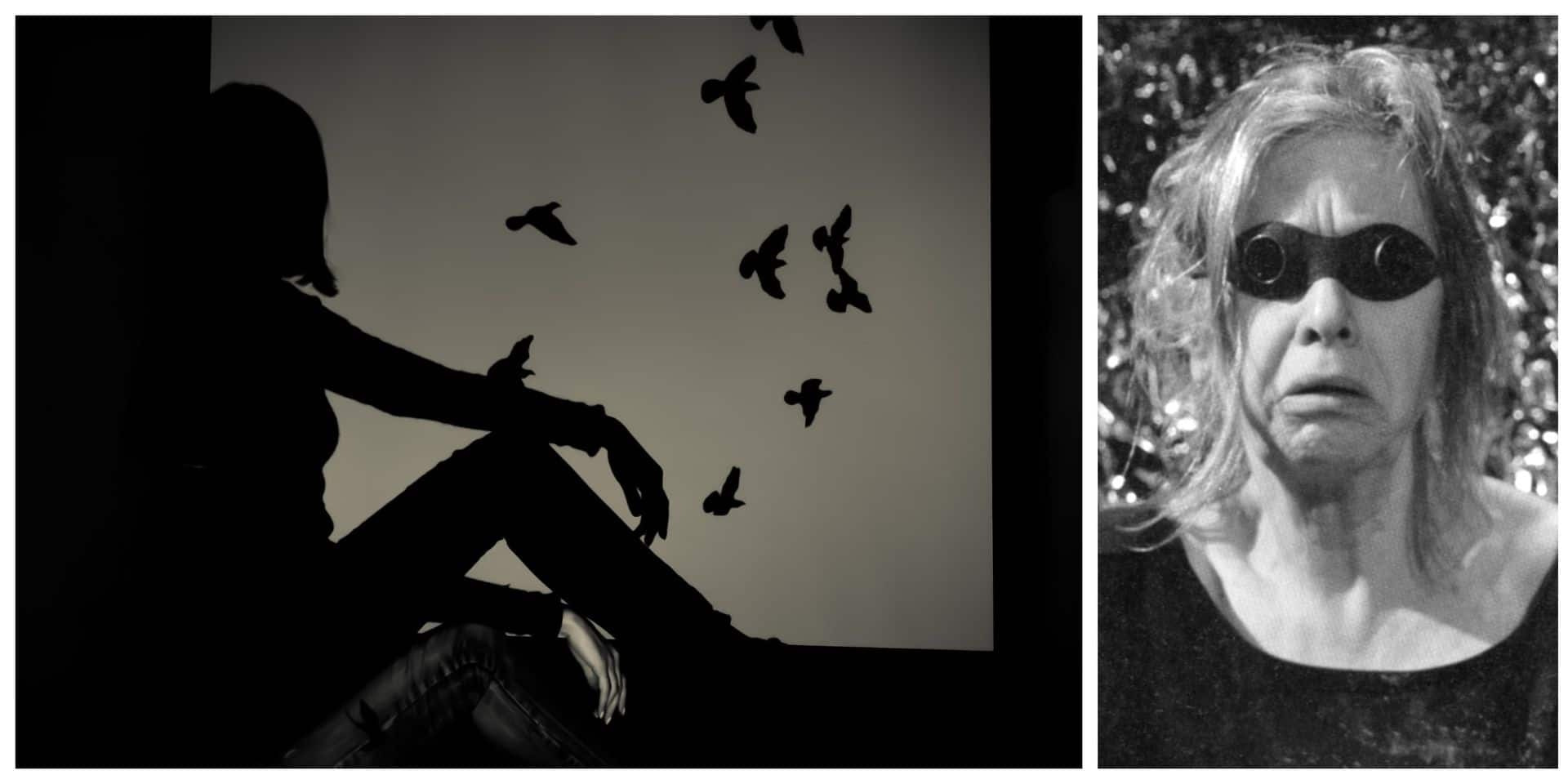La culture au temps du corona : L'oiseau par Agnès Limbos