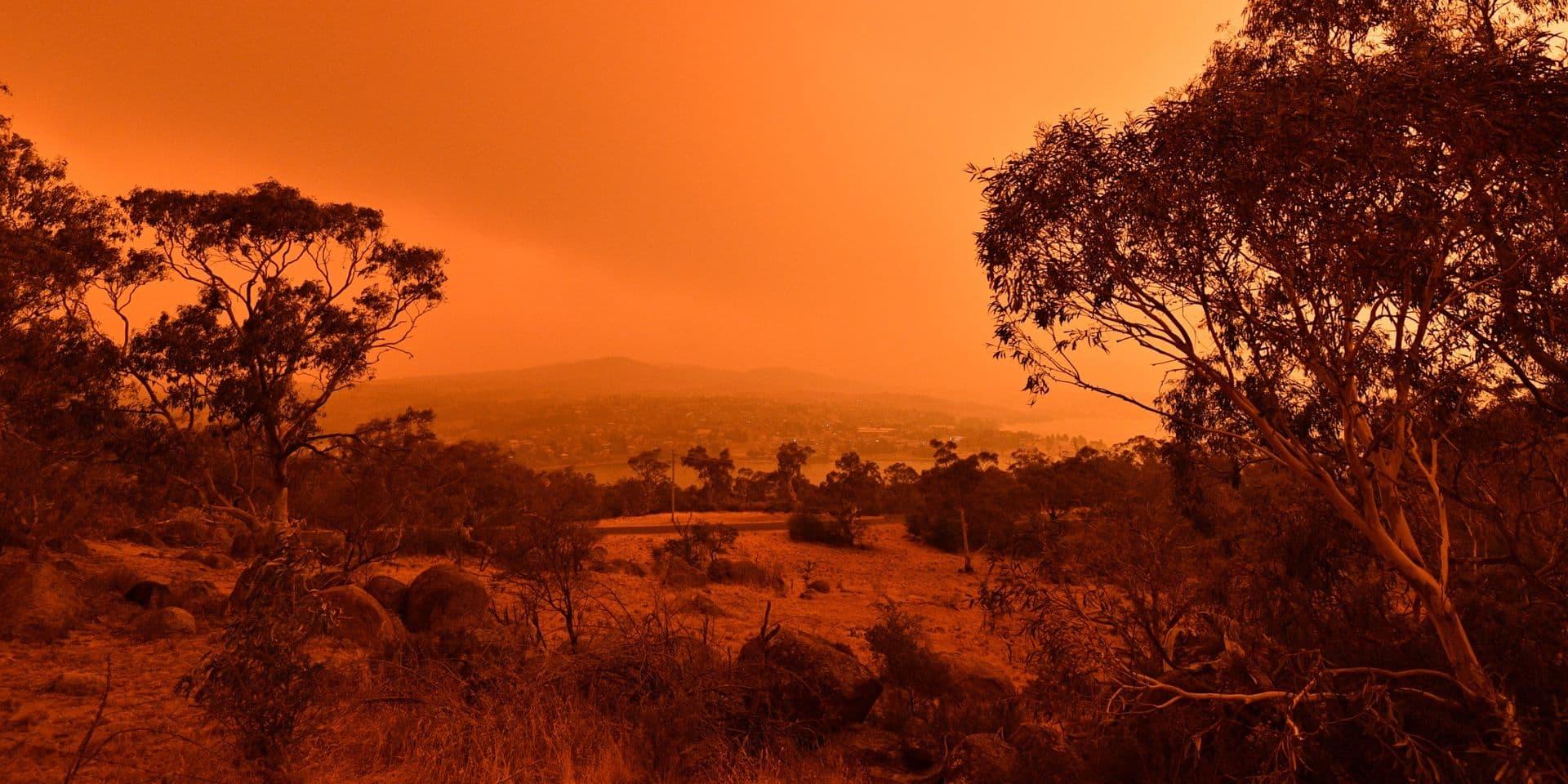 L'Australie prend une décision historique pour faire face aux feux de forêt