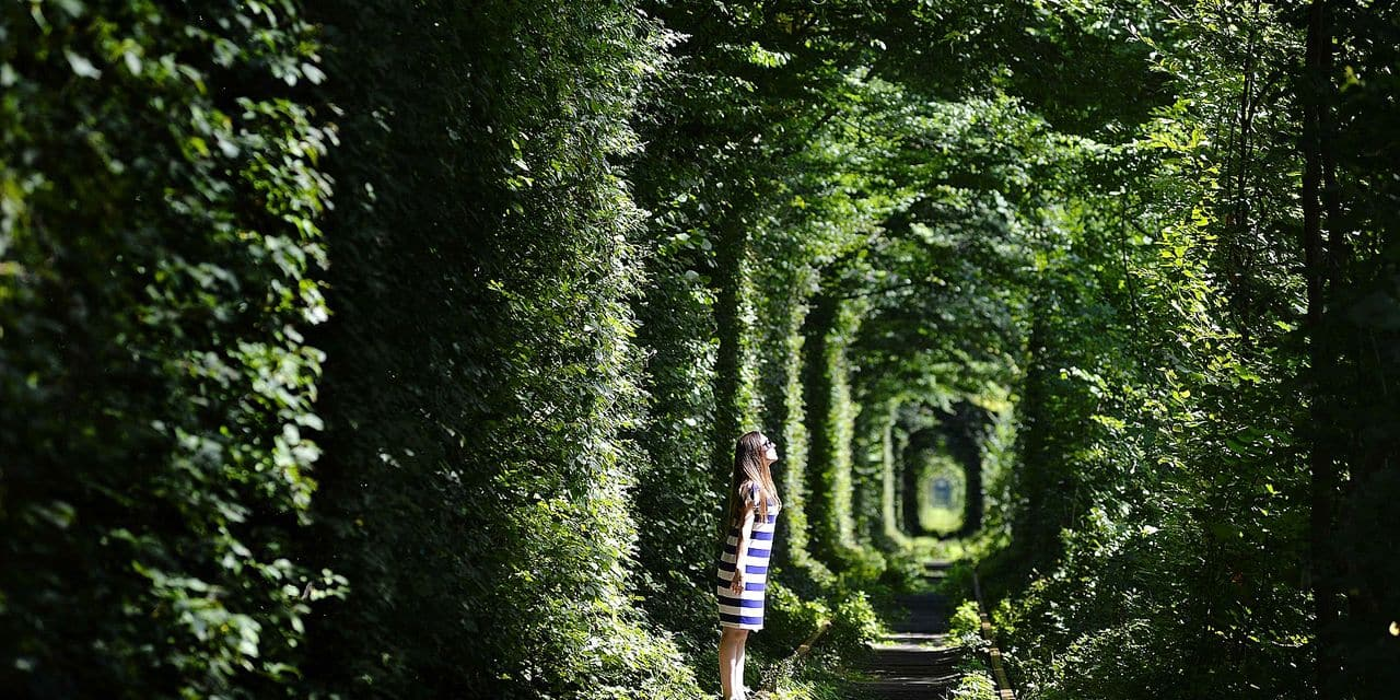 A girl walks along former railway tracks in the so-called 'Tunnel of Love', surrounded by arches of intertwined trees, near the Ukrainian village of Klevan, Rivno region, on August 6, 2018. The tunnel of about five kilometres in length is a botanical phenomenon, which became a cult place for tourists and couples in love. The tourist legend says that wishes of couples in love will come true, if the couple passes through the tunnel. / AFP PHOTO / Sergei SUPINSKY